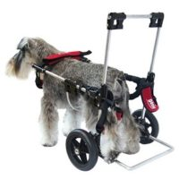 Carro movil perro